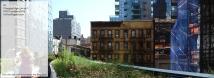 Changing High Line pt.1