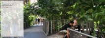 Changing High Line pt.2